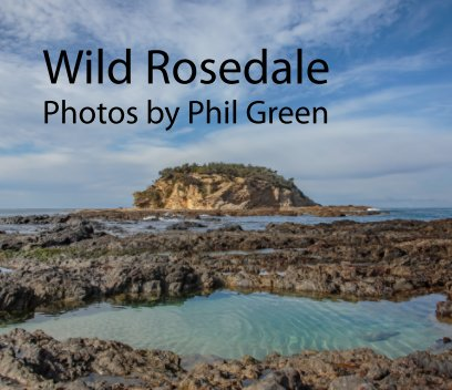 Wild Rosedale book cover