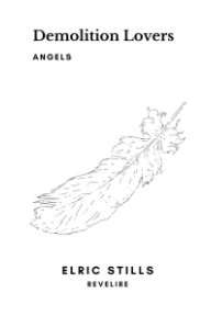 Demolition Lovers: Angels book cover