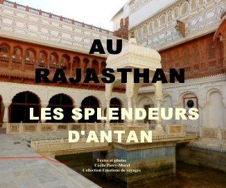 Au Rajasthan book cover
