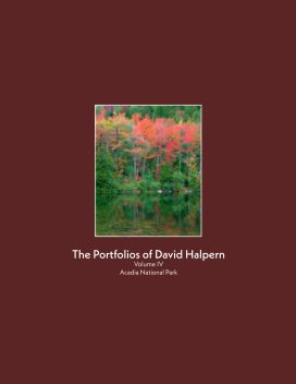 The Portfolios of David Halpern-Volume IV book cover