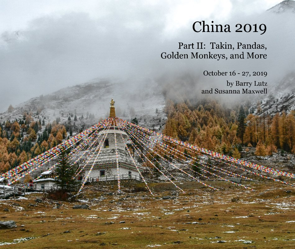 View China 2019 by Barry Lutz and Susanna Maxwell