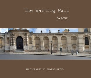 The Waiting Wall book cover