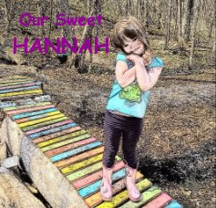 Our Sweet HANNAH book cover