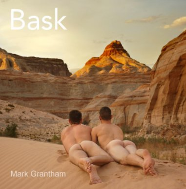 Bask book cover