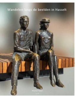 Wandelen langs de beelden in Hasselt book cover