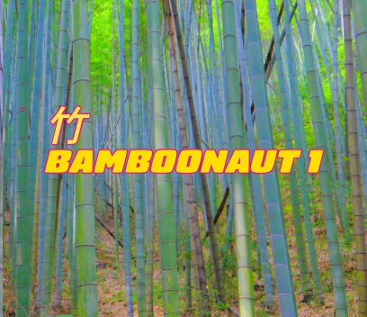 Bamboonaut 1 book cover