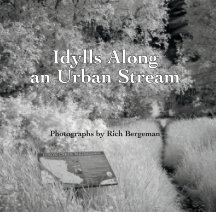 Idylls Along an Urban Stream book cover
