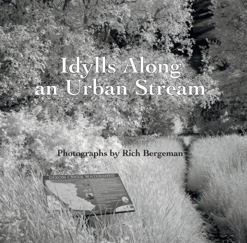 View Idylls Along an Urban Stream by Rich Bergeman