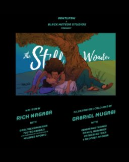 The Still Wonder book cover