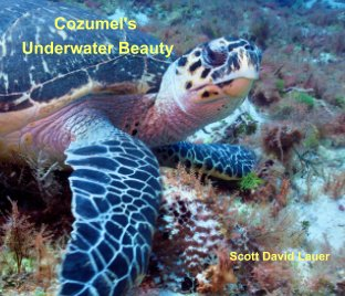 Cozumel's Underwater Beauty book cover
