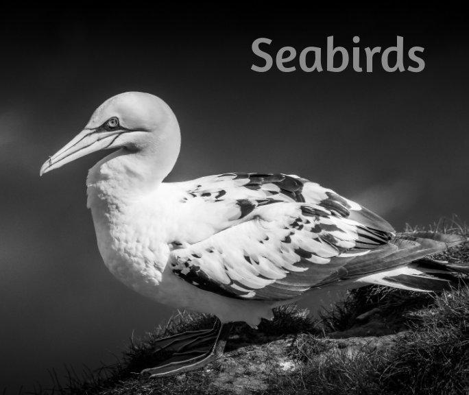 View Seabirds by Paul Aggett