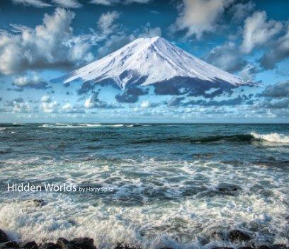 Hidden Worlds book cover