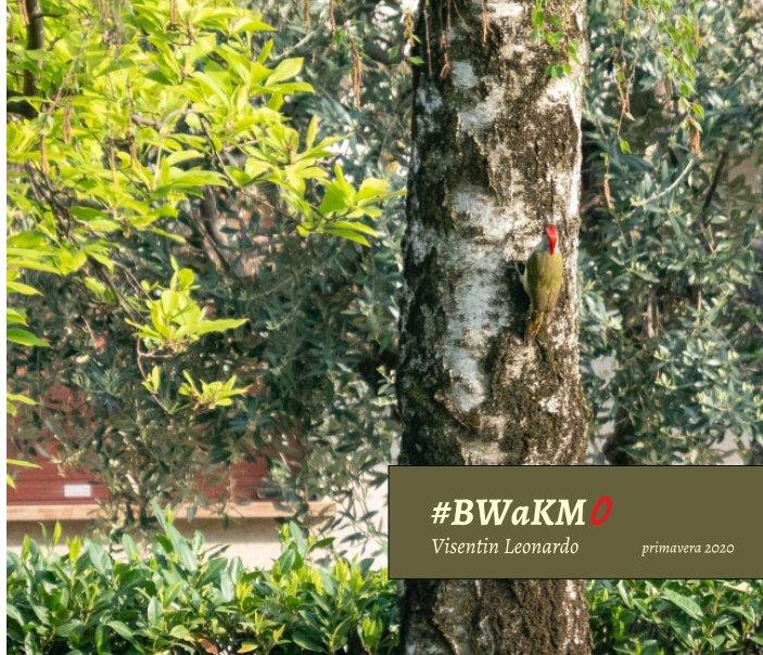 #BWaKM0
