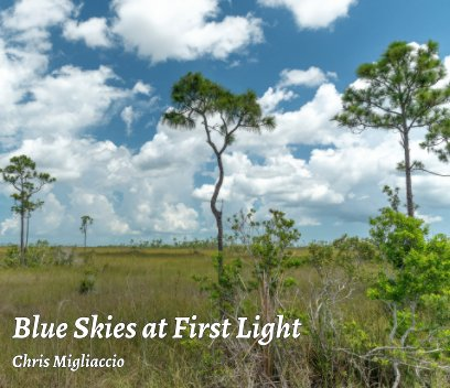 Blue Skies at First Light book cover