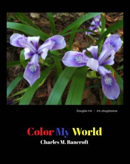Color My World book cover