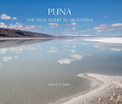 Puna   The High Desert in Argentina book cover