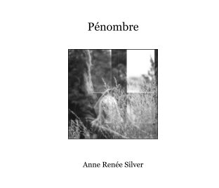 Pénombre book cover