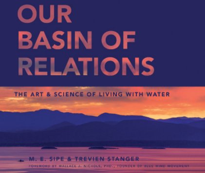 Our Basin of Relations book cover