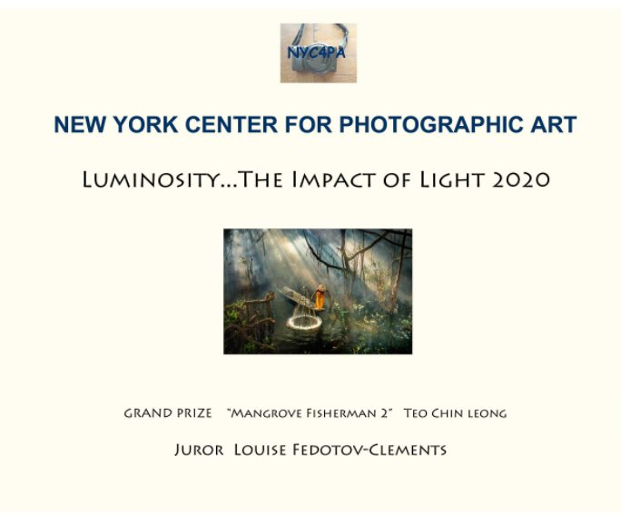View Luminosity---The Impact of Light by NYC4PA