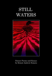 Still Waters book cover