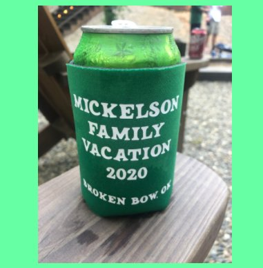 Mickelson Family Reunion 2020 book cover