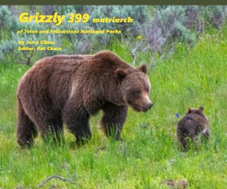 Grizzly 399 book cover