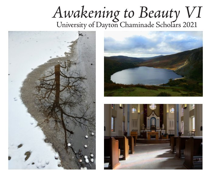 View Awakening to Beauty VI (corrected) by UD Chaminade Scholars - 2020