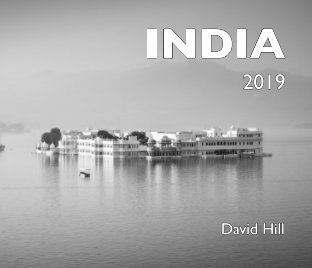 India 2019 book cover