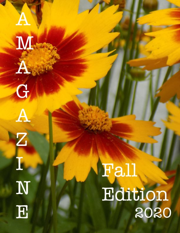 View AMagazine Fall Edition 2020 by Adrienne Posey