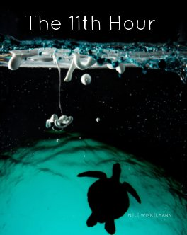 The 11th Hour book cover