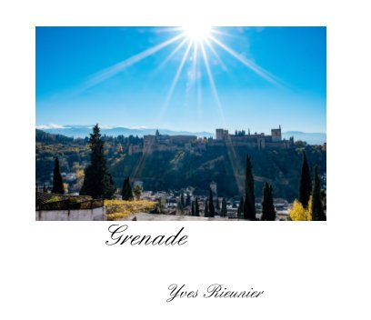 Grenade book cover