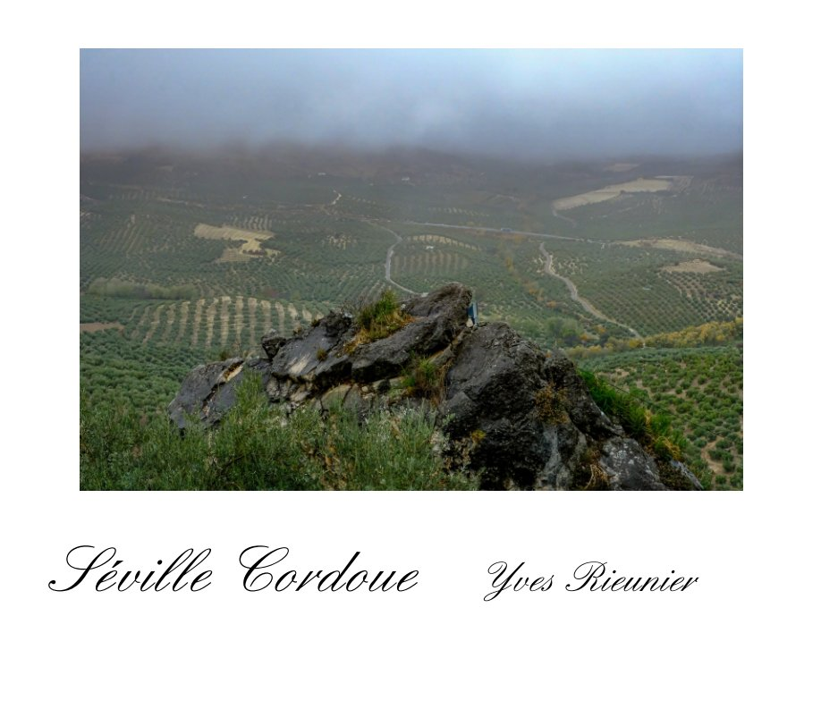 View Seville et Cordoue by Yves Rieunier