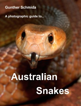 A photographic guide to    Australian Snakes book cover