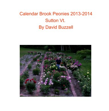 Calendar Brook Peonies 2013-2014 book cover