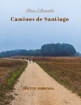 Places I Remember: Caminos de Santiago book cover