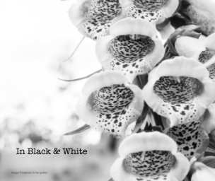 In Black and White book cover