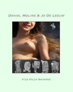 Voyage en terre d'Ombre Brûlée book cover