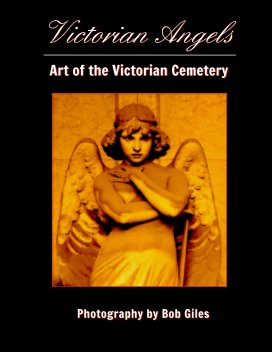 Victorian Angels book cover