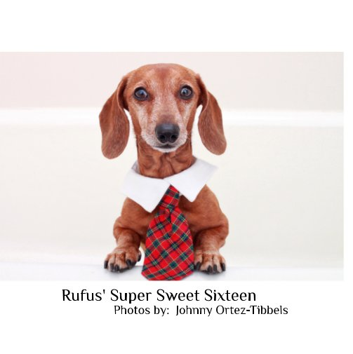 View Rufus Super Sweet Sixteen by Johnny Ortez-Tibbels