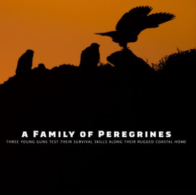 A Family of Peregrines book cover
