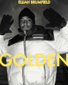 GOLDEN -  Diary of a Hip Hop Kid -When Hip Hop was Fun book cover