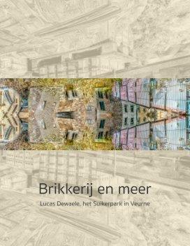 Brikkerij, omwentelingsgezind kijken book cover