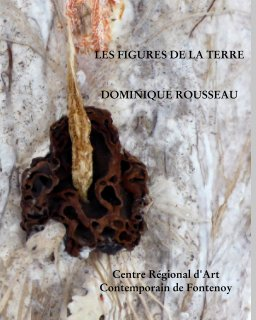 Les figures de la terre book cover