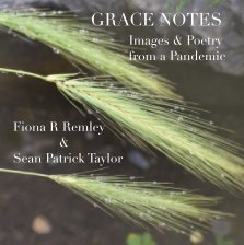 Grace Notes book cover