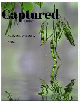 Captured (in silicon) book cover