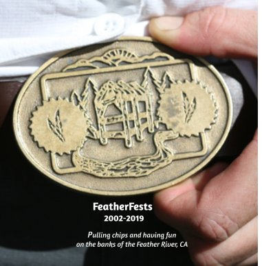 FeatherFest book cover