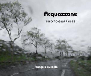 Acquazzone book cover