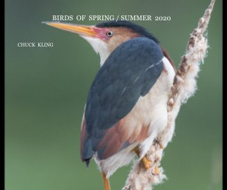 Birds of Spring/ Summer 2020 book cover