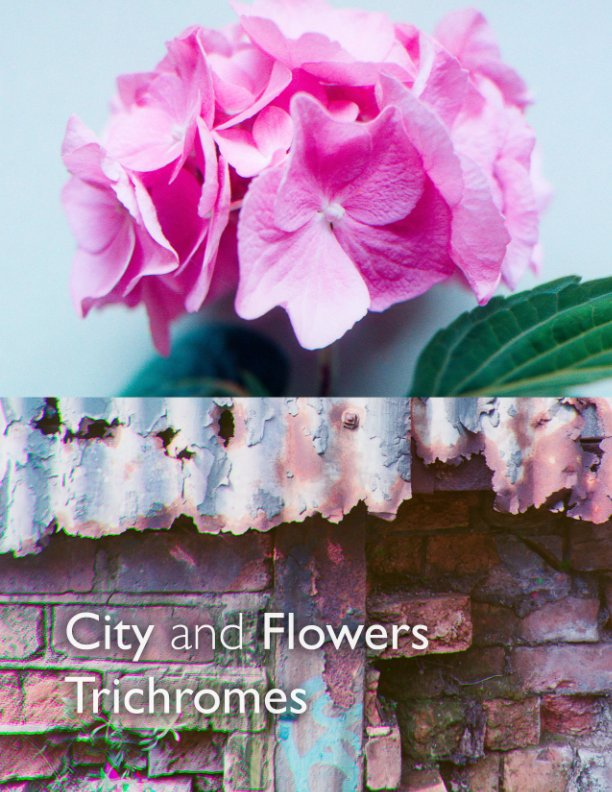 View City and Flowers Trichromes by Anthony Pearson