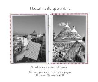 I taccuini della quarantena book cover
